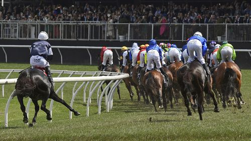 Despite the ethical criticisms of the race in light of the horse's  death, Australian Veterinary Association spokesperson Doctor Ian Fulton said the injury was 'catastrophic' and simply irreparable.