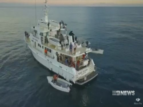 The MV Night Crossing is a purpose-built vessel. (9NEWS)