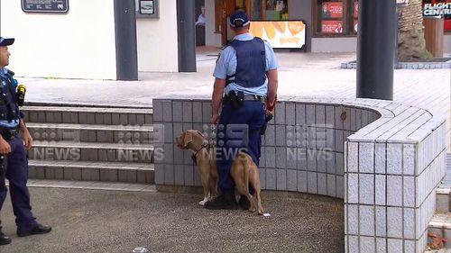 ويعتقد أن الكلب هو المسؤول عن الهجوم.