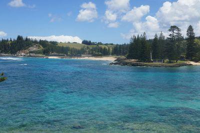 14. Emily Bay, Norfolk Island, Australia