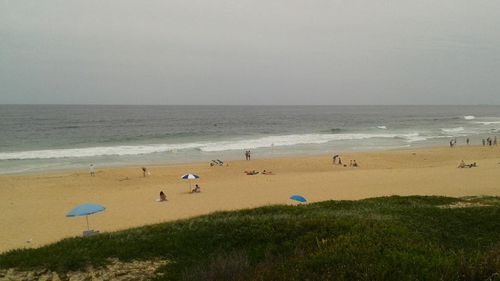Newcastle beaches shut over shark fears