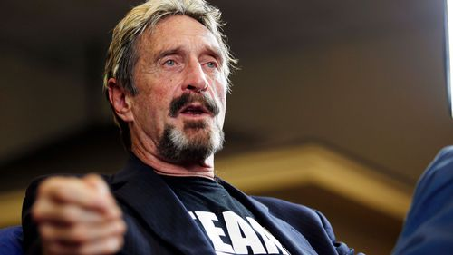 John McAfee announces his candidacy for US president in 2015.