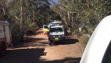 Rescue mission underway after teenage boy falls from cliff at Blue Mountains
