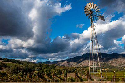 12. Robert Mondavi Winery, California *Best in North America*