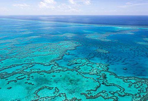 Great Barrier Reef (Getty)