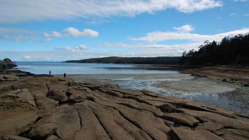 Mystery as 14th foot washes up on Canadian beach