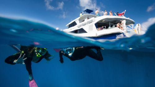 Tourists snorkel over Flynn Reef off the coast of Cairns.