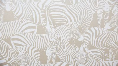 The judges loved the animal themed wallpaper.