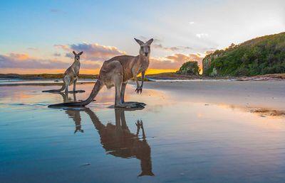Port Macquarie, NSW