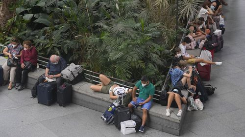 Passengers wait and relax in the botanical garden inside the Atocha rail station in Madrid, Spain, on Saturday, August 14, 2021. (AP Photo/Paul White)