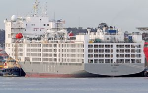 Coronavirus: Tensions rising over who permitted infected live export ship to dock in WA