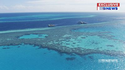 Australian scientists unlocking key to save world's reefs
