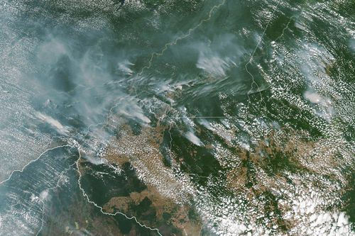 Handout photo made available by NASA of a satellite image showing several fires burning in the Brazilian states of Amazona.