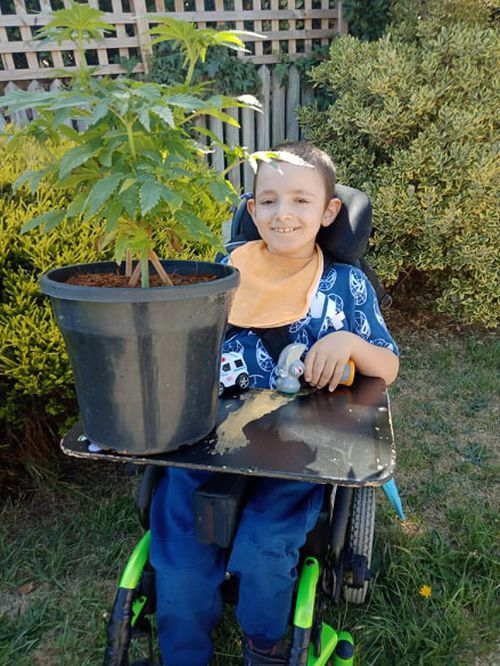 Shelby was having up to 60 seizures a day before being given CBD oil as a treatment.