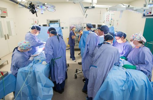 Up to 25 people worked on the surgery today at the Royal Children's hospital in Melbourne.