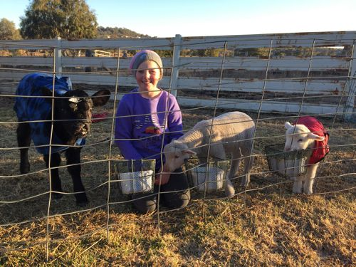 Inverell resident Amanda Anderson's children Sophie, nine and Lachlan, 14, are also lending a hand.