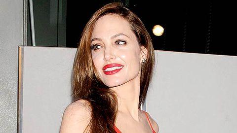 Angelina Jolie stole my movie idea, claims writer