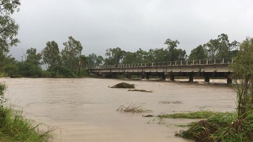 Meanwhile, a deluge of rain is hitting Townsville, with locals saying they haven't seen water in the Black River in ten years. (Tom Fowles / 9NEWS)