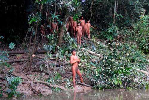 A high-risk expedition in the Amazon has reunited the isolated Korubo group with relatives and eased tensions with a rival tribe near the border with Peru.