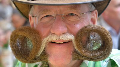 The awards are divided into three categories - moustache, partial beard and full beard. (AAP)