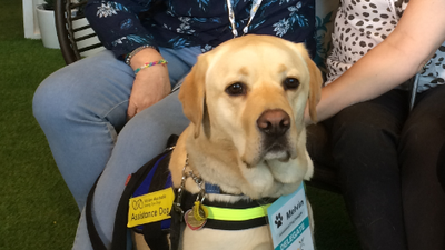 Dogs paired with dementia patients to help build independence