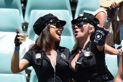Fans revel at the Sevens in Sydney. (AAP)