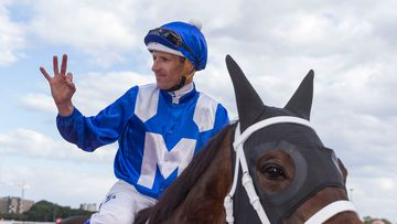 NSW racehorse tipped to become 'greatest in history'
