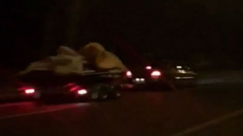 The car and trailer were seen speeding down Whites Road in Paralowie in the early hours of this morning. (9NEWS)