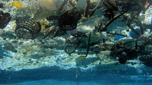 More plastic than fish in the world's oceans by 2050: report