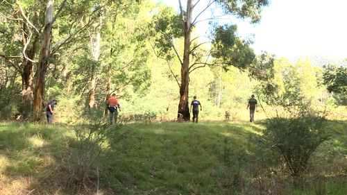 Police search bushland for missing clues and the two friends who vanished.