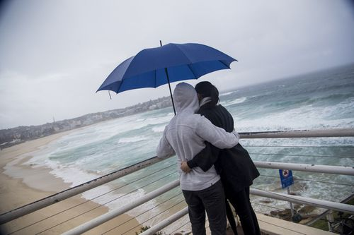 Looking for icebergs at Bondi Beach. Picture: Cade Thompson