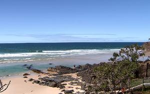 Tweed surfer 'traumatised' after close encounter with shark at Cabarita Headland