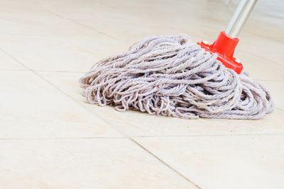 Mops and brooms