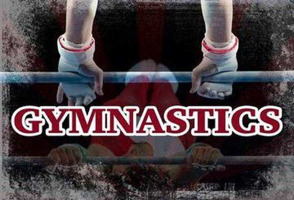 International Gymnastics 2018