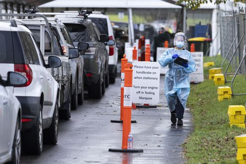 Staff wearing PPE are seen amongst massive queues at a pop-up COVID test site at Albert Park Lake in Melbourne.