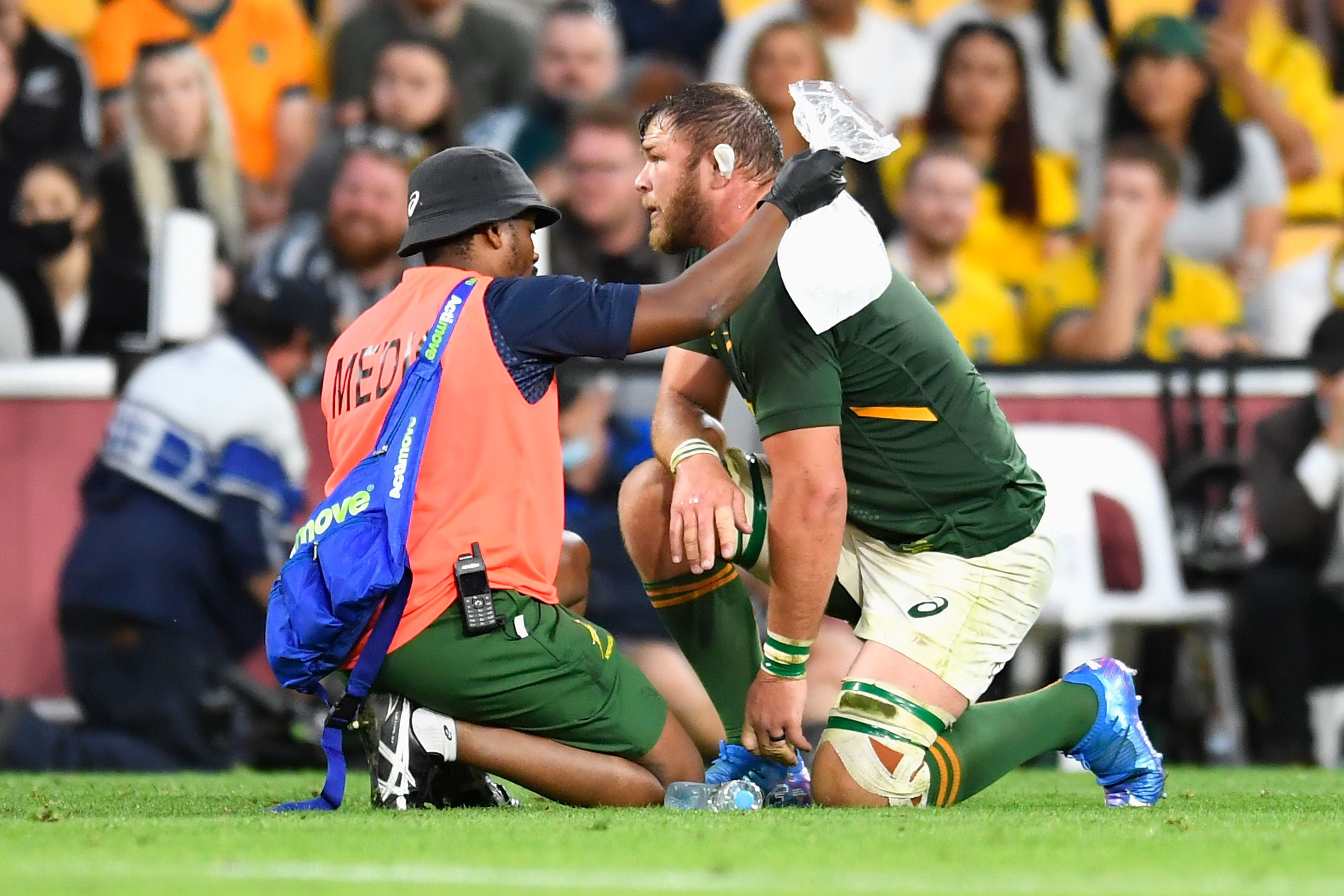 Rugby Championship: Springboks coach Jacques Nienaber apologises to fans after second straight loss to Wallabies