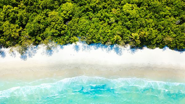 An aerial view of Cape Tribulation