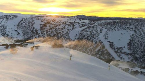 Mount Hotham on Thursday morning recorded 65cm of snow, which is the highest for this date since 2012. (Twitter: _Hotham)