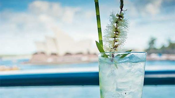 Trolley'd Australia Day lemon myrtle punch