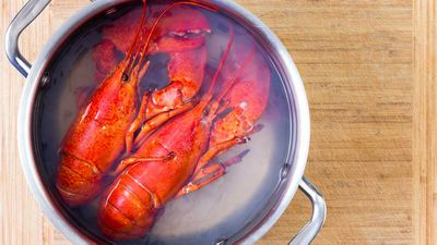 Switzerland outlaws boiling lobster alive: January 2018