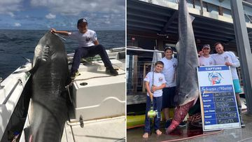 Sydney boy, 8, reels in 314kg shark