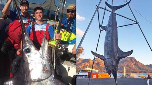 Kyle Longmore and his record 263 kg catch. (Supplied)