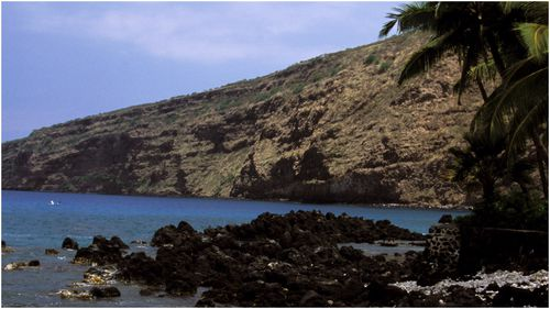 A woman was attacked by a shark while swimming off Big Island's  Kealakekua Bay.