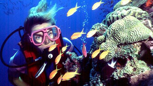 """The United Nations Agency UNESCO has said that """"climate change remains the most significant overall threat to the future"""" of the coral expanse. (AAP file image)"""