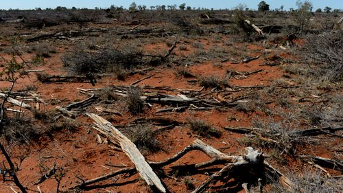 The findings come as parts of New South Wales are being gripped by a devastating drought causing heartbreak and struggle for farmers. Picture: Supplied.