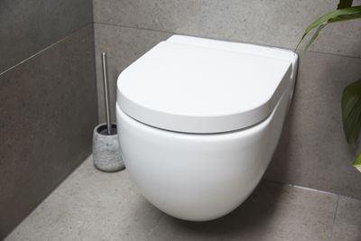 The judges liked that the planter box hides the toilet when you initially enter the house.