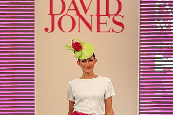 David Jones logo and model