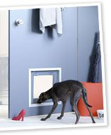 DIY doggy door