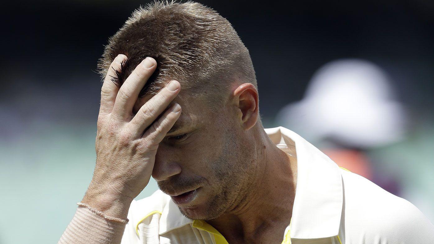 Hypocritical David Warner a 'bully', says former South African spinner Paul Harris