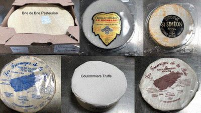 Cheeses recalled over possible Listeria outbreak
